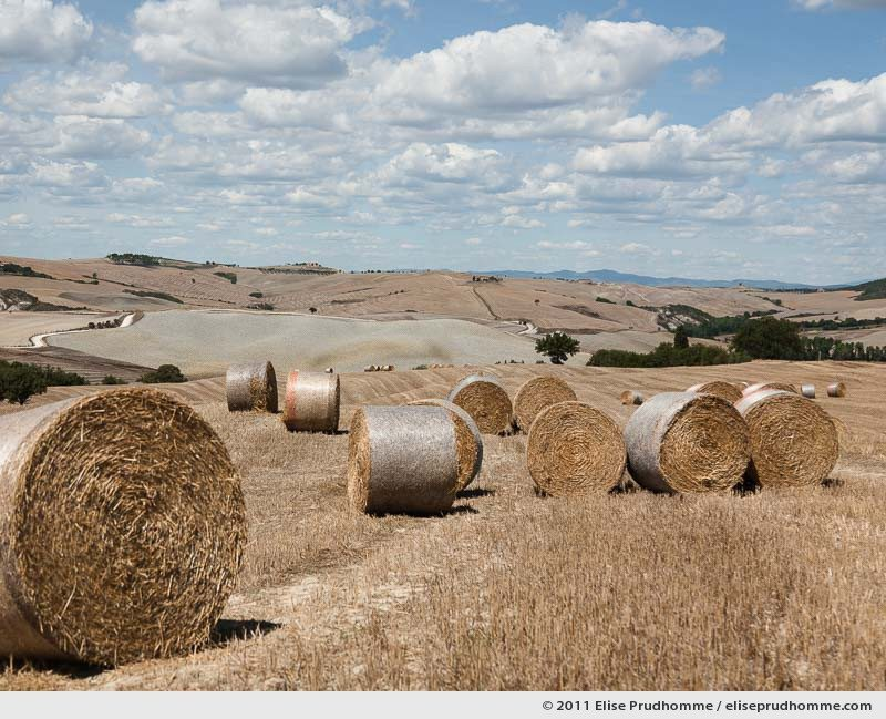 Hay bales, rolling fields and dappled clouds on a summer day, Tuscany, Italy, 2011 by Elise Prudhomme