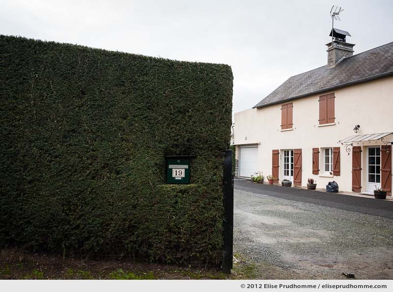 Trimmed hawthorn hedge with mailbox and country house, Normandy, France, 2012 by Elise Prudhomme