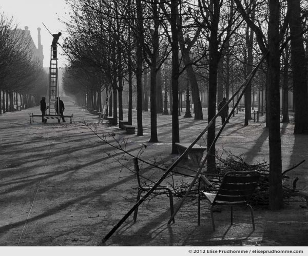 Equilibre or Equilibrium, Tuileries Garden, Paris, France, 2012 (part of the series Yours, Mine, Le Nôtre's) by Elise Prudhomme.