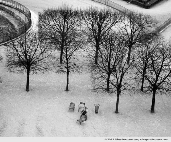 Espace or Space, Tuileries Garden, Paris, France, 2011 (part of the series Yours, Mine, Le Nôtre's) by Elise Prudhomme.