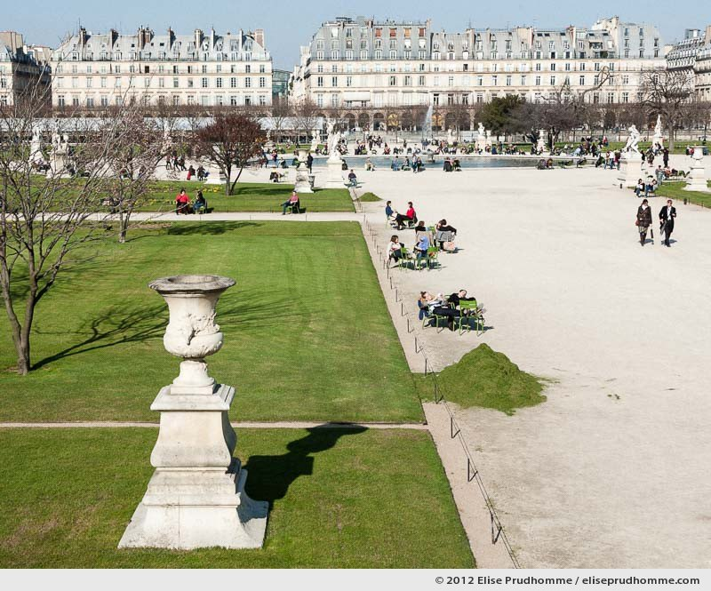 Green, Tuileries Garden, Paris, France, 2011 (part of the series Yours, Mine, Le Nôtre's) by Elise Prudhomme.