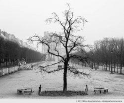 Liberté or Liberty, Tuileries Garden, Paris, France, 2011 (part of the series Yours, Mine, Le Nôtre's) by Elise Prudhomme.