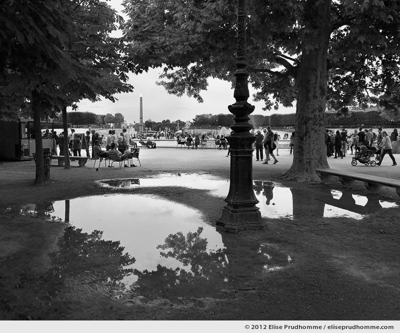 Point de fuite or Vanishing Point, Tuileries Garden, Paris, France, 2012 (part of the series Yours, Mine, Le Nôtre's) by Elise Prudhomme.
