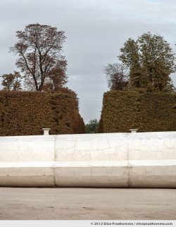 The Fall, Tuileries Garden, Paris, France, 2011 (part of the series Yours, Mine, Le Nôtre's) by Elise Prudhomme.