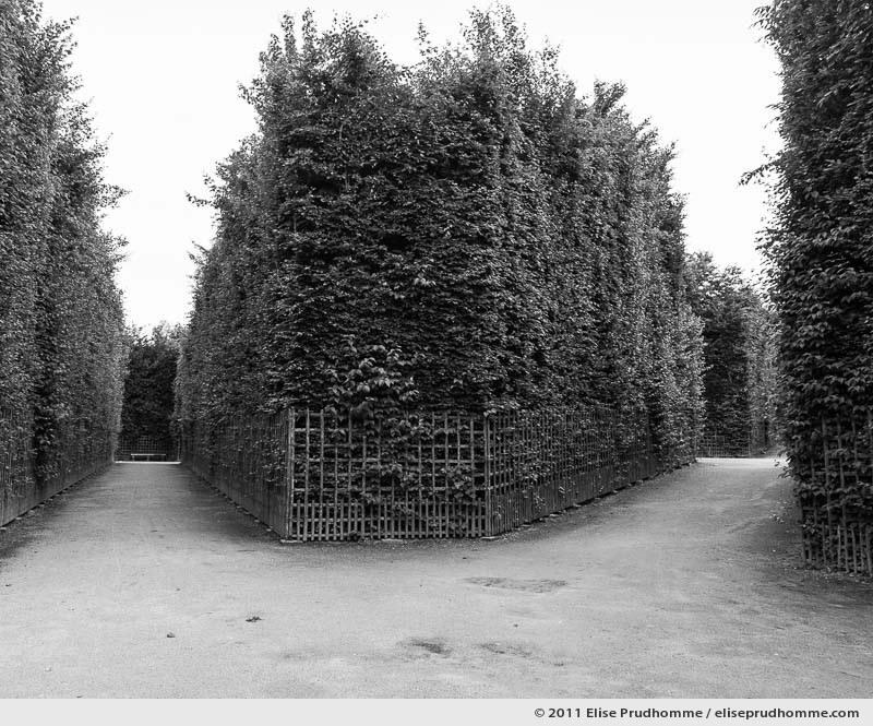 Corset, Versailles Chateau Garden, Paris, France, 2011 (part of the series Yours, Mine, Le Nôtre's) by Elise Prudhomme.