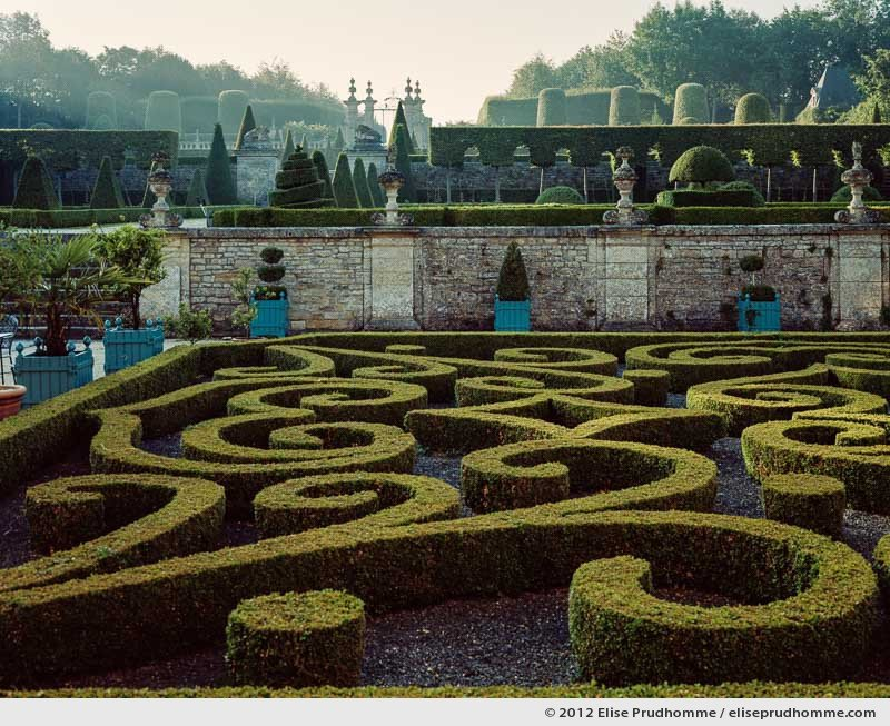 Formal boxwood parterre on ground level of Brecy Castle Gardens, Saint Gabriel Brécy, France, 2012 (series Notable Gardens of France) by Elise Prudhomme.
