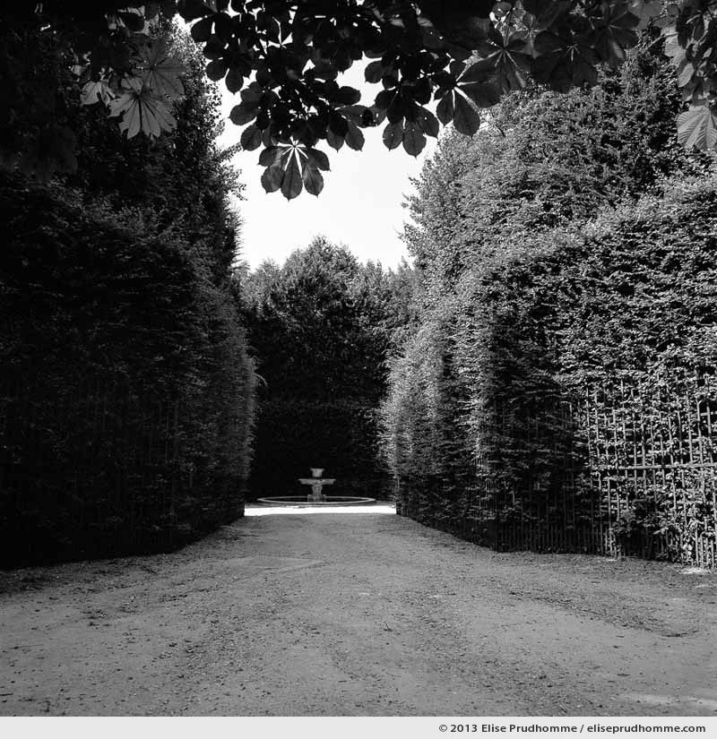 Salle des marronniers, Versailles Chateau Garden, France, 2013 (part of the series Yours, Mine, Le Nôtre's) by Elise Prudhomme.