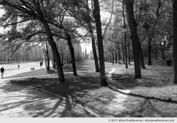 Le Grand Canal, Sceaux Park, France, 2012 (series Yours, Mine, Le Nôtre's) by Elise Prudhomme.