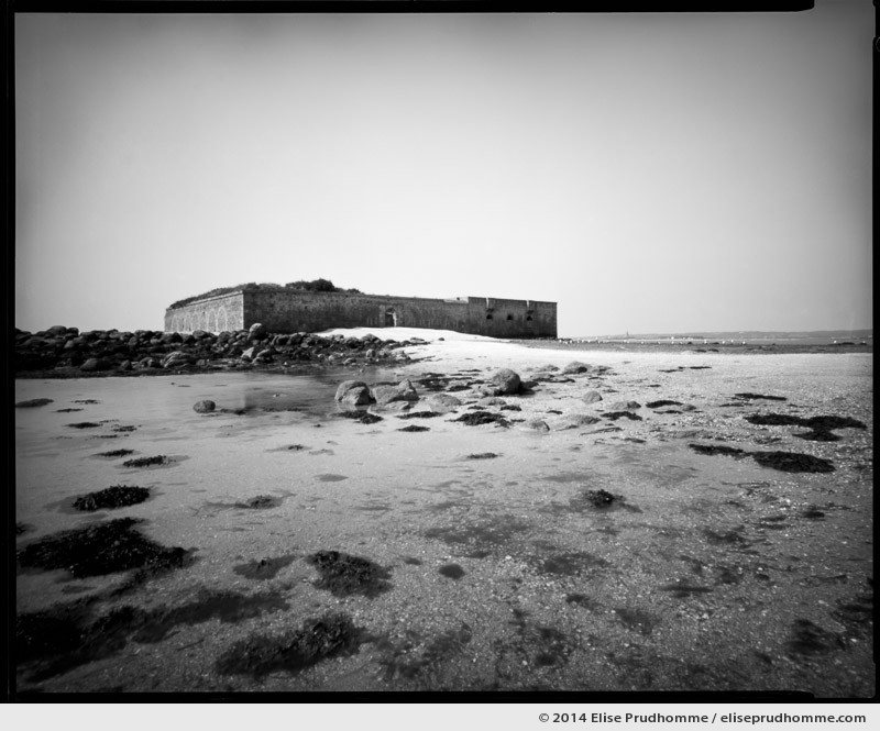 Ornithological reserve at low tide, Saint-Vaast-la-Hougue, France. 2014 (series Sands of Time) by Elise Prudhomme.