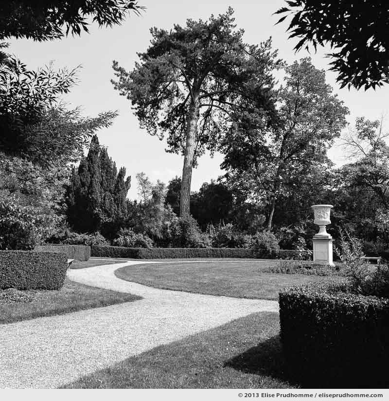 Jardin du roi, Versailles Chateau Garden, France, 2013 (part of the series Yours, Mine, Le Nôtre's) by Elise Prudhomme.