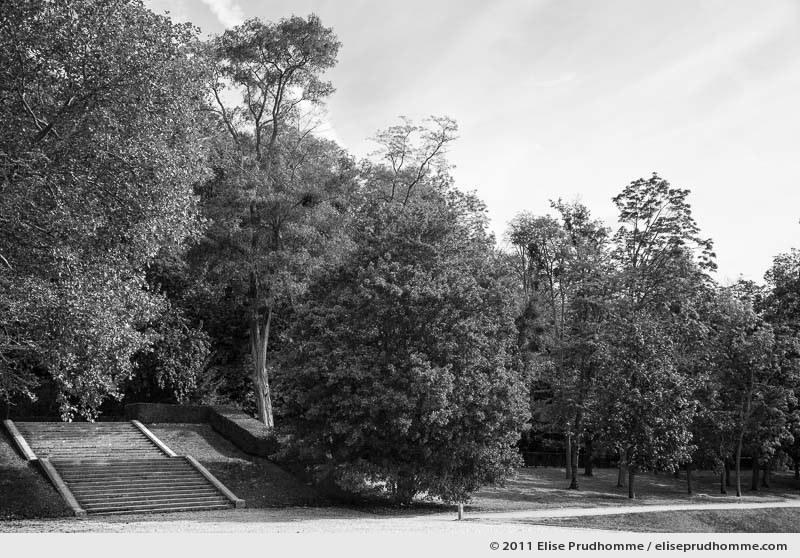 La voie, Parc de Sceaux, France, 2012 (series Yours, Mine, Le Nôtre's) by Elise Prudhomme.
