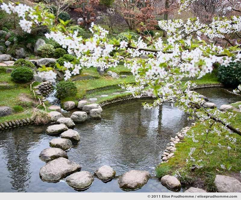 Modern Japanese Garden #1, Albert Kahn Garden, Boulogne-Billancourt, France, 2011 by Elise Prudhomme.