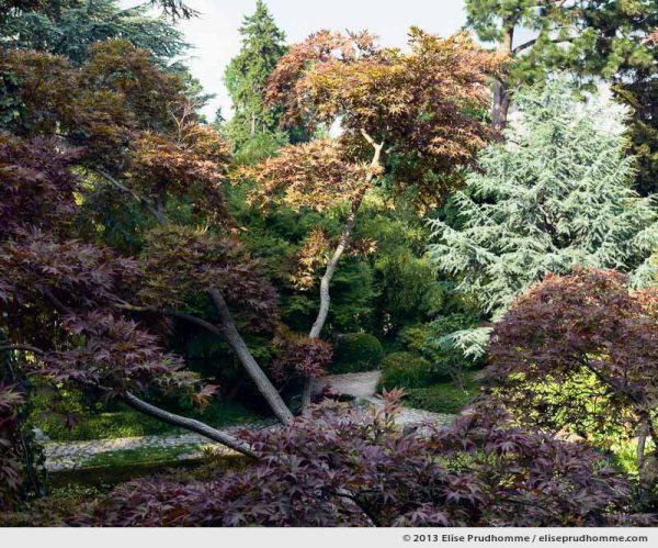 Modern Japanese Garden #2, Albert Kahn Garden, Boulogne-Billancourt, France, 2013 by Elise Prudhomme.