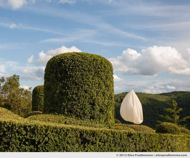 Night lamp by day, The Suspended Gardens of Marqueyssac, Vezac, France (series Notable Gardens of France) by Elise Prudhomme.