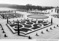 Broderie, Versailles Chateau Garden, France, 2012 (part of the series Yours, Mine, Le Nôtre's) by Elise Prudhomme.