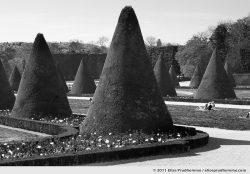 Plié, Parc de Sceaux, France, 2011 (series Yours, Mine, Le Nôtre's) by Elise Prudhomme.
