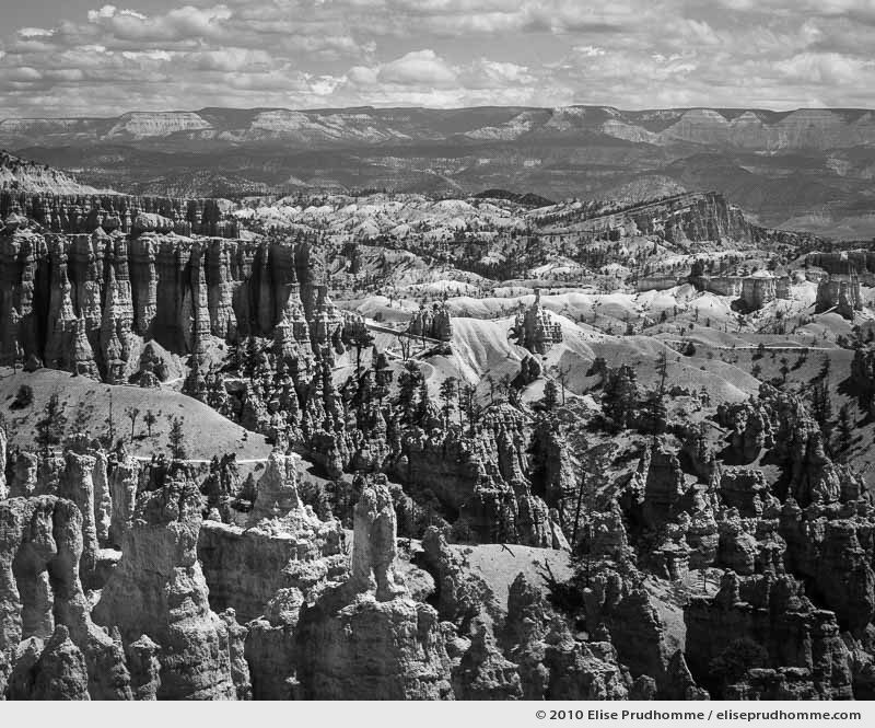 Rim Trail scenic landscape and hoodoos, Bryce Canyon, Utah, USA, 2010 (series Wild Wild West) by Elise Prudhomme.