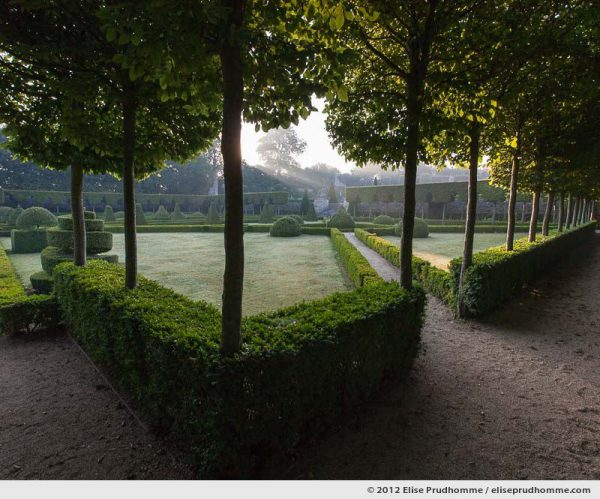 Sunrise through the tree-lined walkway on the first terrace, Brecy Castle Gardens, Saint Gabriel Brécy, France, 2012 (series Notable Gardens of France) by Elise Prudhomme.