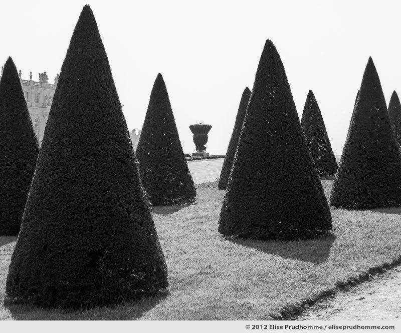 Tête-bêche or Upside-Down, Versailles Chateau Garden, France, 2012 (part of the series Yours, Mine, Le Nôtre's) by Elise Prudhomme.