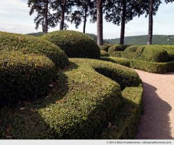 The Bastion #2, The Suspended Gardens of Marqueyssac, Vezac, France (series Notable Gardens of France) by Elise Prudhomme.