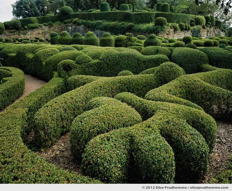 The Bastion #5, The Suspended Gardens of Marqueyssac, Vezac, France (series Notable Gardens of France) by Elise Prudhomme.