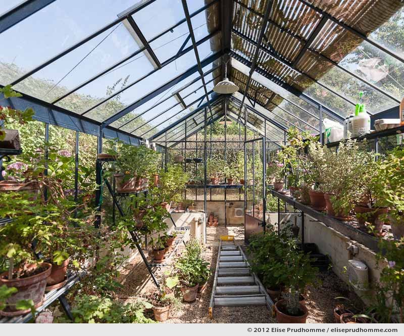 The greenhouse, Brecy Castle Gardens, Saint Gabriel Brécy, France, 2012 (series Notable Gardens of France) by Elise Prudhomme.