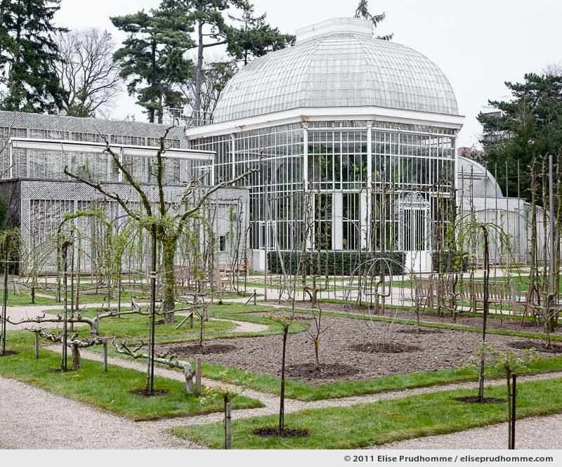 The Rose Garden #2, Albert Kahn Garden, Boulogne-Billancourt, France, 2011 by Elise Prudhomme.