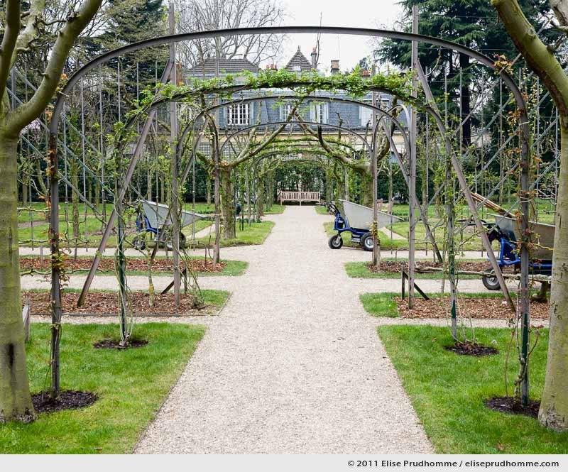 The Rose Garden #4, Albert Kahn Garden, Boulogne-Billancourt, France, 2011 by Elise Prudhomme.