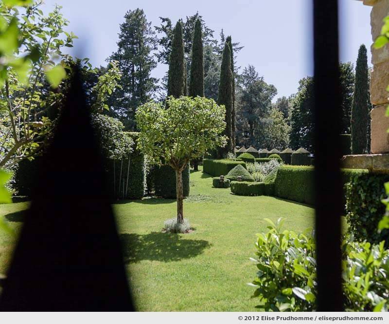 Topiary study #5, Eyrignac Gardens, Salignac-Eyvigues, France, 2012 (series Notable Gardens of France) by Elise Prudhomme.