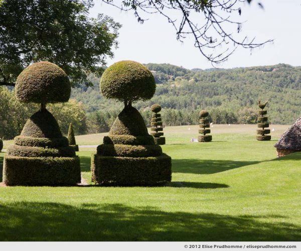 Topiary study #6, Eyrignac Gardens, Salignac-Eyvigues, France. 2012 (series Notable Gardens of France) by Elise Prudhomme.