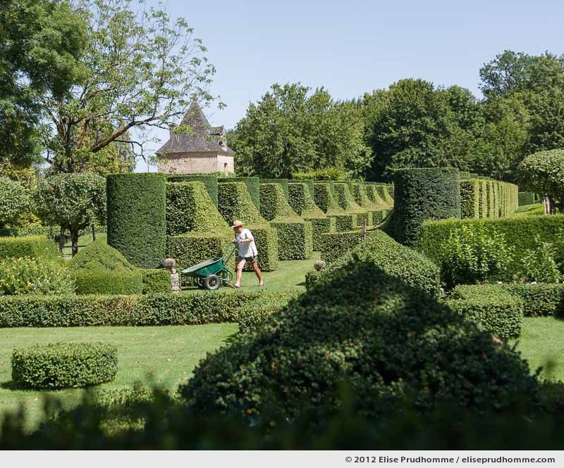 Topiary study #7, Les Sculptures Végétales, Eyrignac Gardens, Salignac-Eyvigues, France. 2012 (series Notable Gardens of France) by Elise Prudhomme.