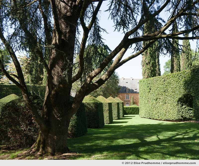 Topiary study #8, Eyrignac Gardens, Salignac-Eyvigues, France, 2012 (series Notable Gardens of France) by Elise Prudhomme.