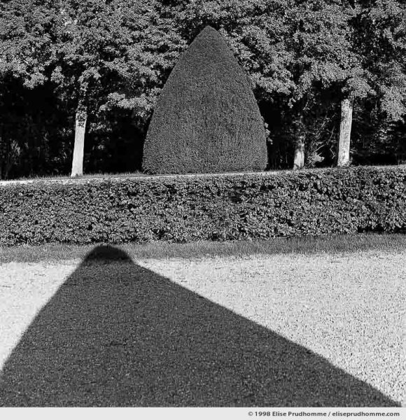 Topiary study, Vaux-le-Vicomte Castle and Garden, Maincy, France. 1998 (series Yours, Mine, Le Nôtre's) by Elise Prudhomme.