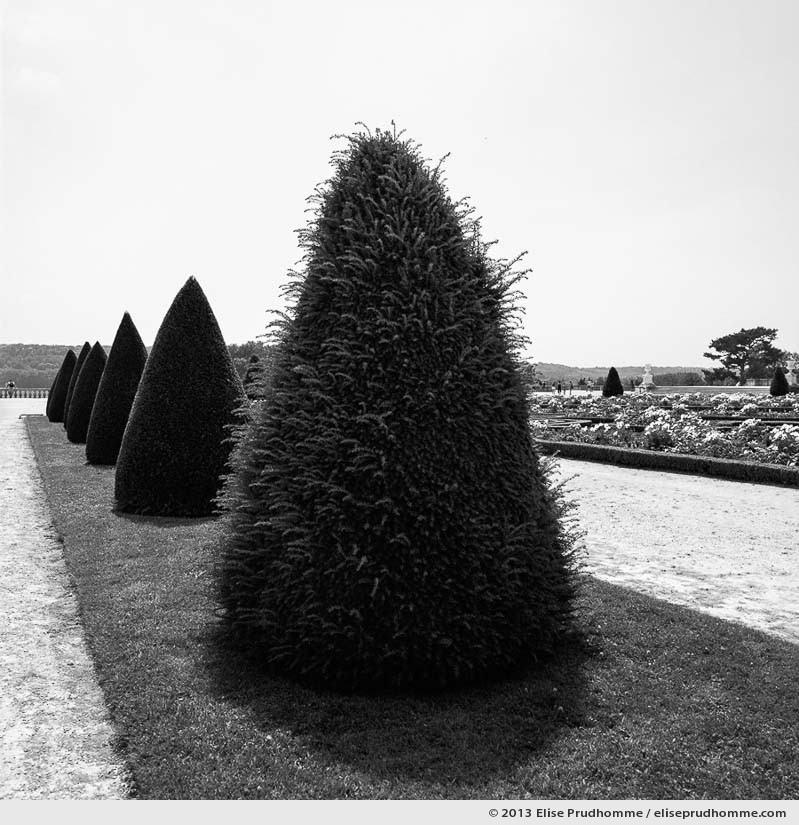 Beatnik, Versailles Chateau Garden, France, 2013 (part of the series Yours, Mine, Le Nôtre's) by Elise Prudhomme.