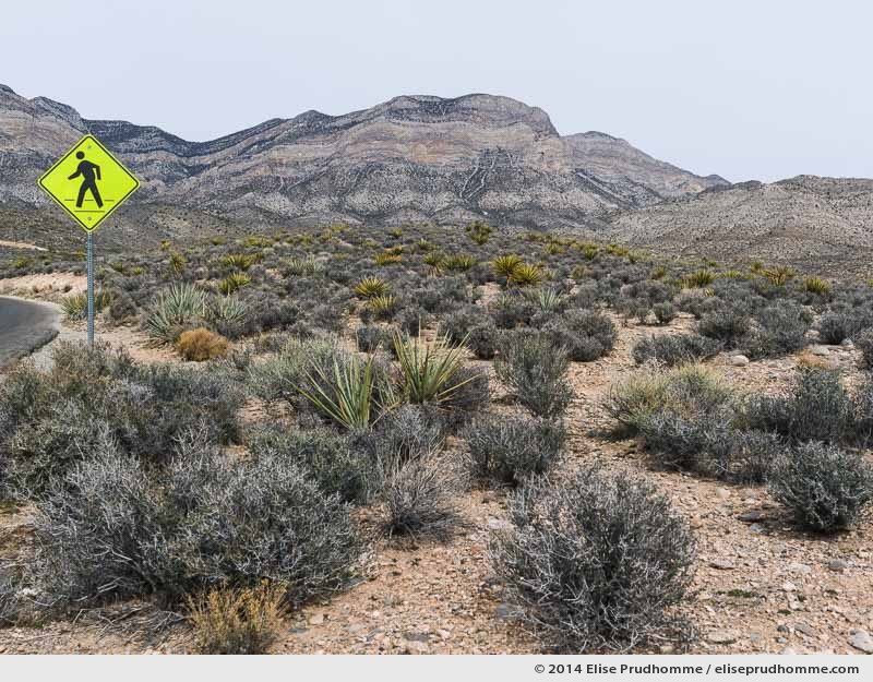 Walk this way signage in the rocky landscape of Red Rock Canyon National Conservation Area, Nevada, USA, 2014 (series Wild Wild West) by Elise Prudhomme.