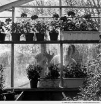 Greenhouse #1, Pennsylvania, USA (series Exposed - À découvert) by Elise Prudhomme.