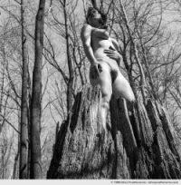 Pure souche, Pennsylvania, USA (series Exposed - À découvert) by Elise Prudhomme.