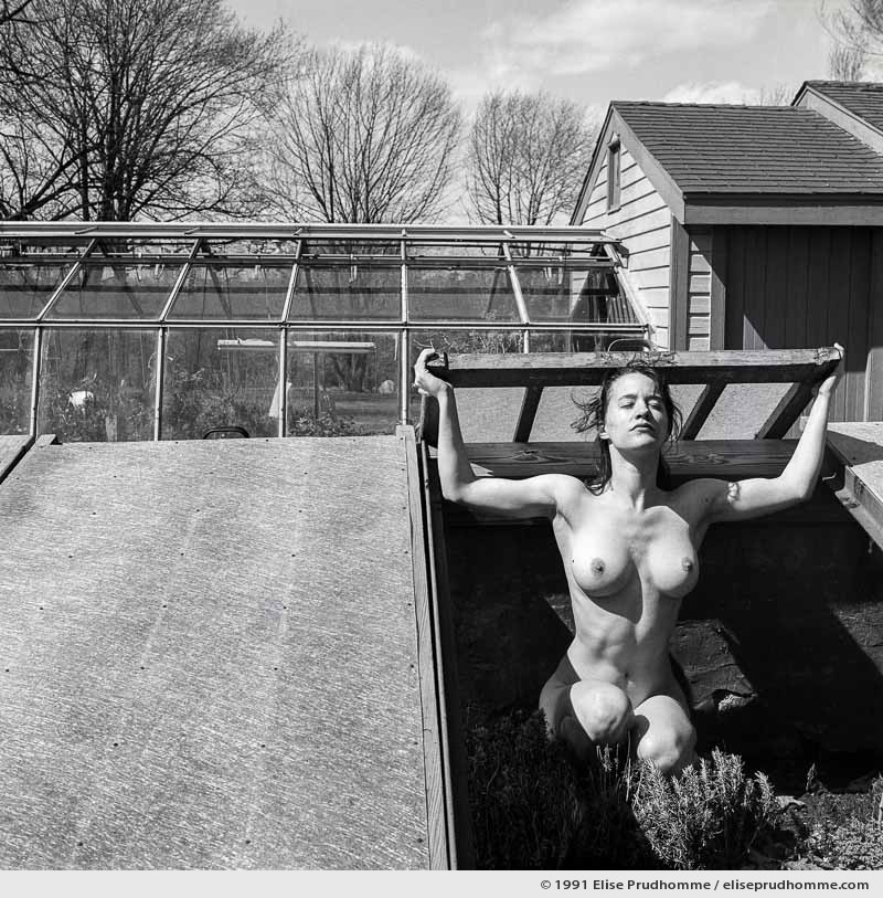 Young Shoot, Pennsylvania, USA.  (series Modern Times) by Elise Prudhomme.