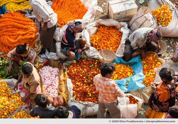 Aerial view of people working in the Mallick Ghat Flower Market, Howrah Bridge, Calcutta, India, 2009