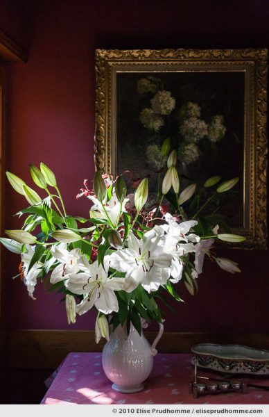 Bouquet of white lilies in a white vase on a table in bright sunlight, Normandy, France, 2010 by Elise Prudhomme.