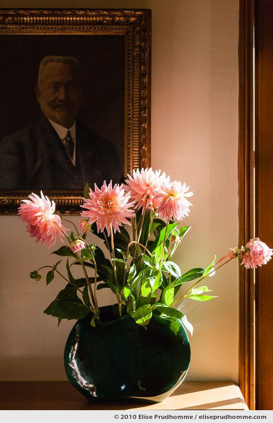 Fresh garden cut pink dahlias in a dark green vase, Normandy, France, 2010 by Elise Prudhomme.