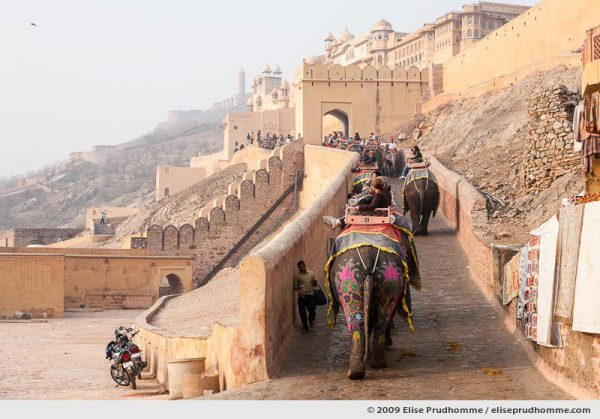 Tourists riding elephants to the Amer Fort (Amer Palace), Jaipur, Rajasthan, India, 2009 by Elise Prudhomme.