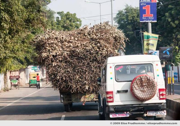 Truck overloaded with tree branches, Agra, Uttar Pradesh, India, 2009 by Elise Prudhomme.