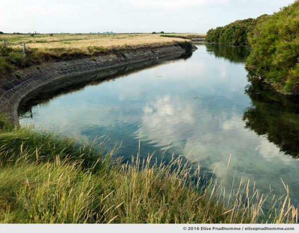 Sky reflected in the moat of the Vauban Fort, Tatihou Island, Saint-Vaast-la-Hougue, France