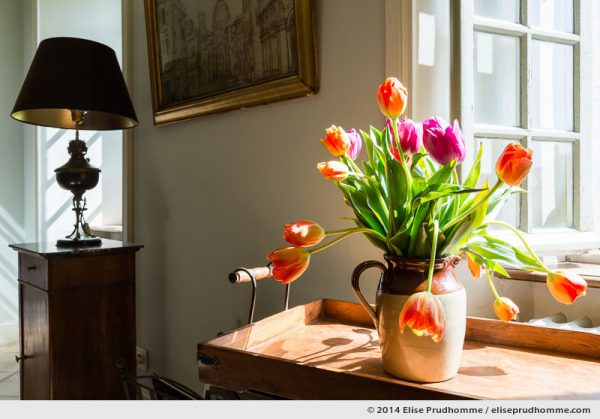 Focus on a bouquet of orange and magenta tulips in a carafe on a wooden tray by window light.  Background view of a living room interior and a brass lamp.  Mise au point sur un bouquet de tulipes orange et rose sur un plateau en bois éclairé par une fenêtre ouverte.
