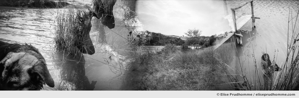 Black and white panoramic photograph of cooling off in a lake, Buonconvento, Italy.  Analog photography series entitled Lieux-dits by Elise Prudhomme.