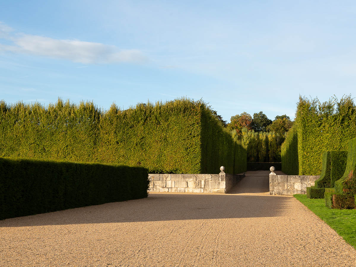 Bordering groves of the Chateau du Champ de Bataille, Normandy,