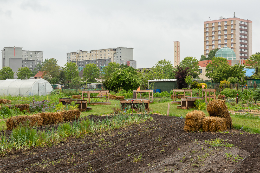 Garden of the Sensitive Zone, Seine-Saint-Denis.  Inauguration de la Ferme Urbaine de Saint-Denis le 11 mai 2019.  Zone Sensible / Parti Poétique et la Ferme Ouverte de Saint-Denis.