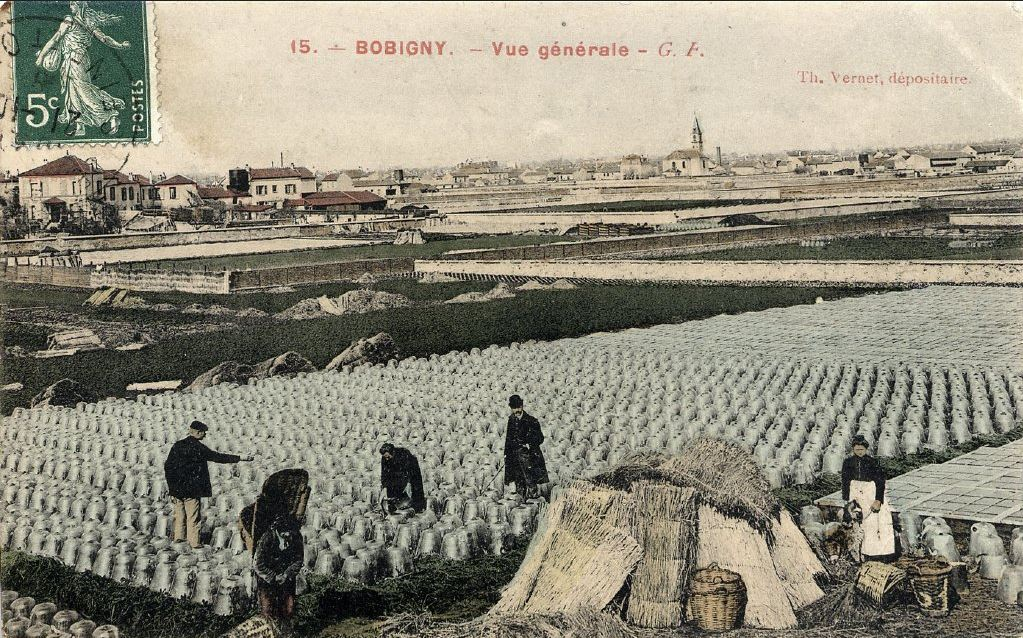 "Postcard showing cultivated fields in the ""Plain of Virtues"", Bobigny, France."