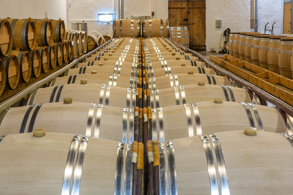 Barrel chai of Château Pavie Macquin, St Émilion Gironde Franc